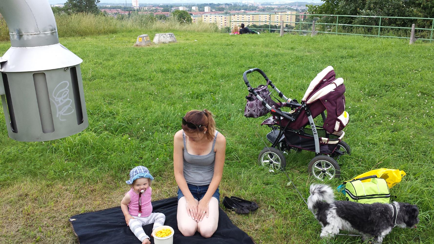 Eftermiddagspicknick